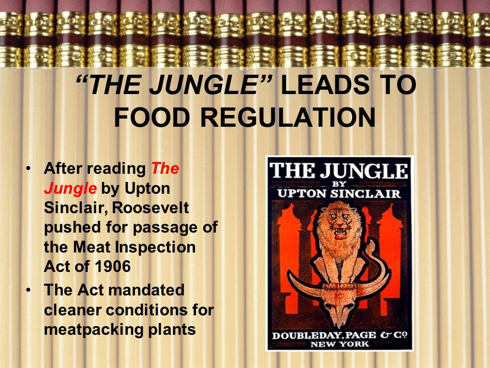 THE JUNGLE LEADS TO FOOD REGULATION