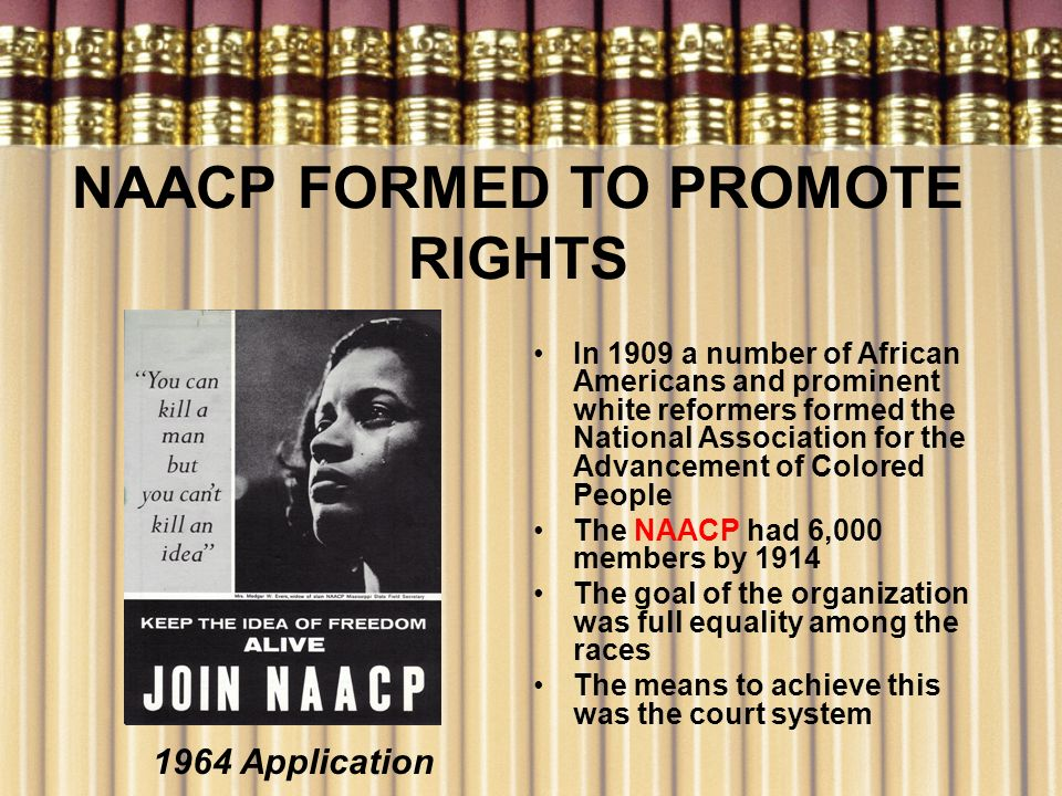 NAACP FORMED TO PROMOTE RIGHTS