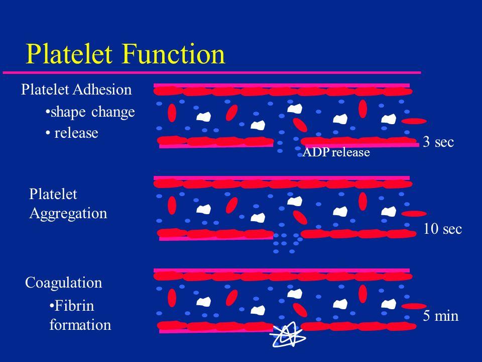 Platelet Function Platelet Adhesion shape change release 3 sec 10 sec