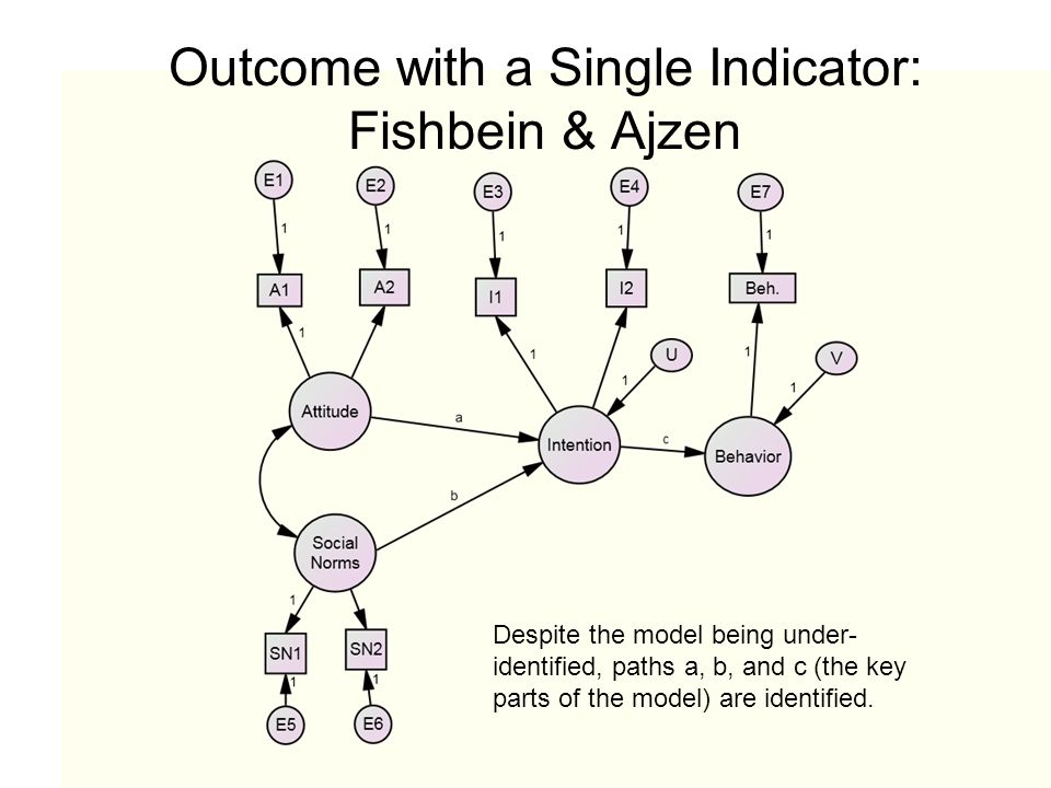 Outcome with a Single Indicator: Fishbein & Ajzen