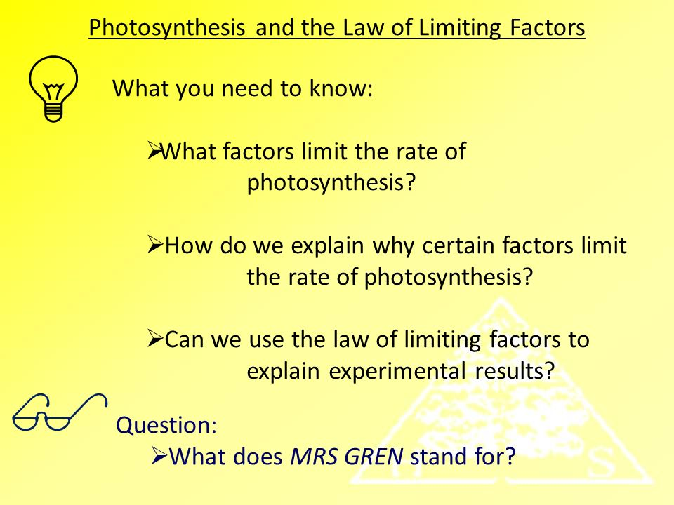 photosynthesis factors Learn the factors of photosynthesis chemical process try these 4 simple tests to prove the requirement of light energy, water and others.