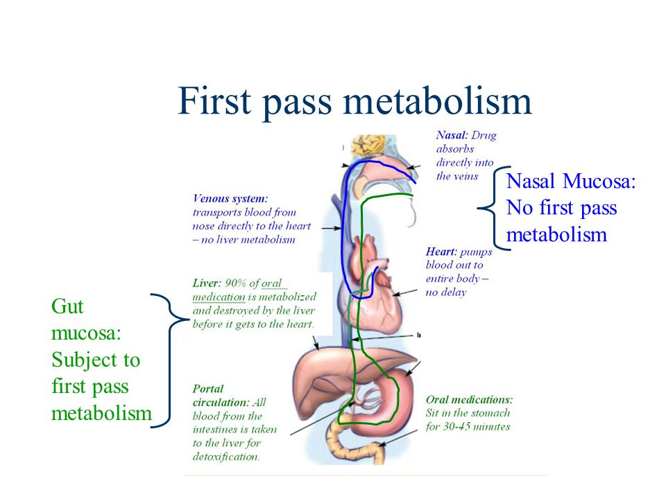 First pass metabolism Nasal Mucosa: No first pass metabolism