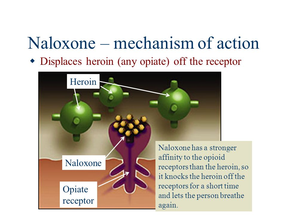 Naloxone – mechanism of action