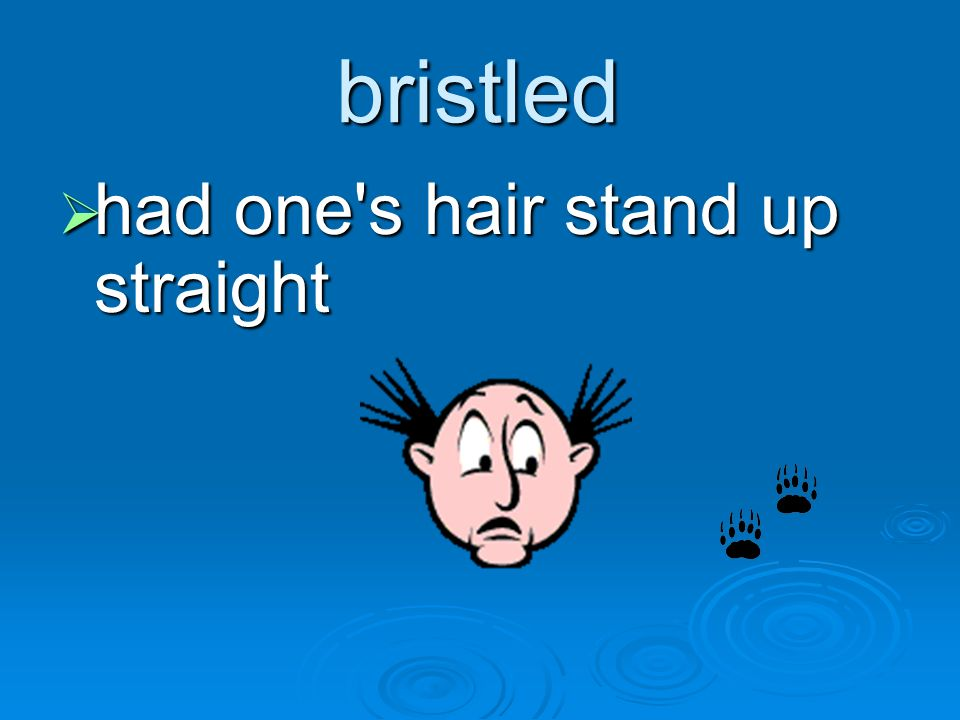 bristled had one s hair stand up straight