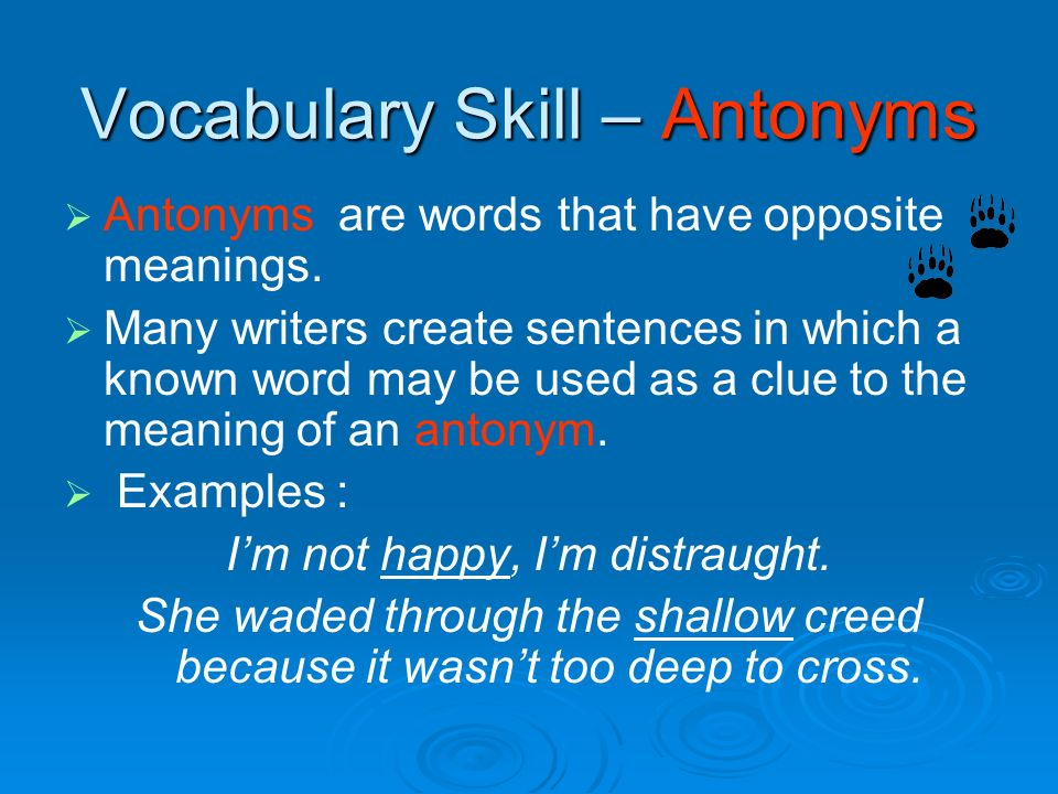 Vocabulary Skill – Antonyms