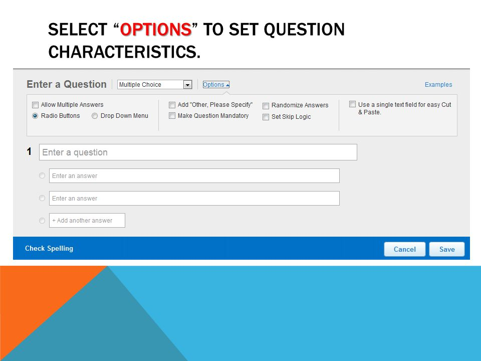 Select Options to set question characteristics.