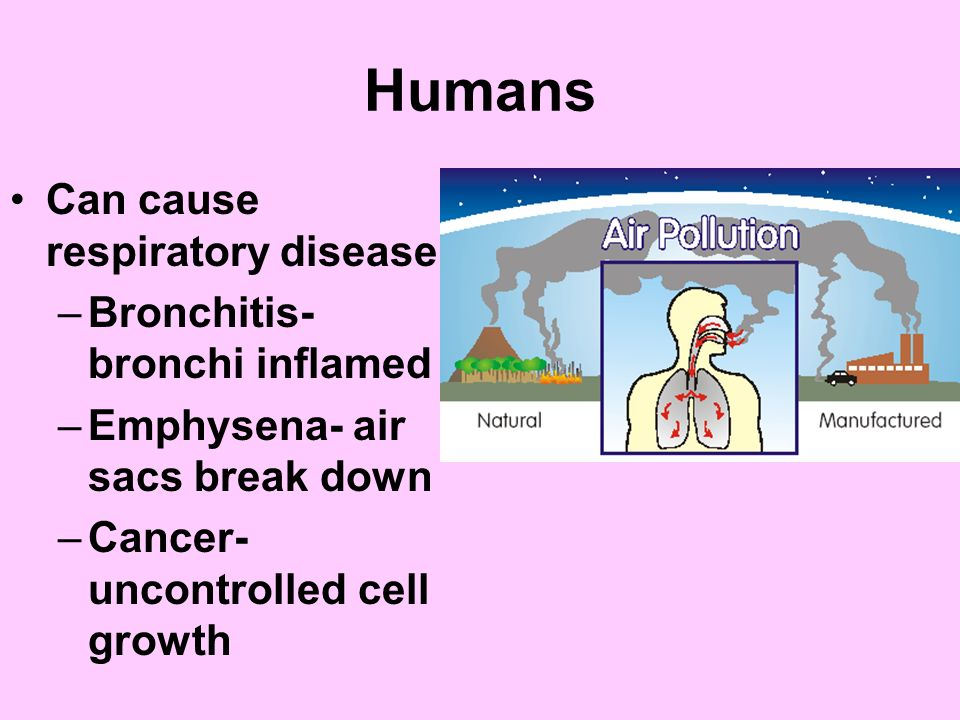 how environmental problems can affect health This is the air pollution and respiratory health health issues asthma asthma is a serious environmental health threat, but it can be controlled by taking.