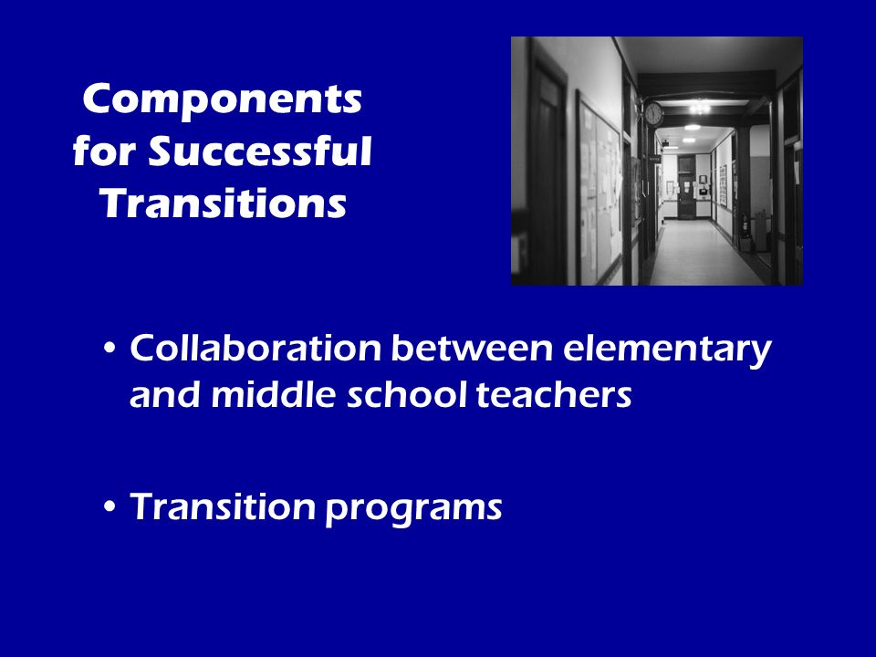 Components for Successful Transitions