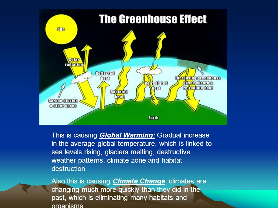 This is causing Global Warming: Gradual increase in the average global temperature, which is linked to sea levels rising, glaciers melting, destructive weather patterns, climate zone and habitat destruction