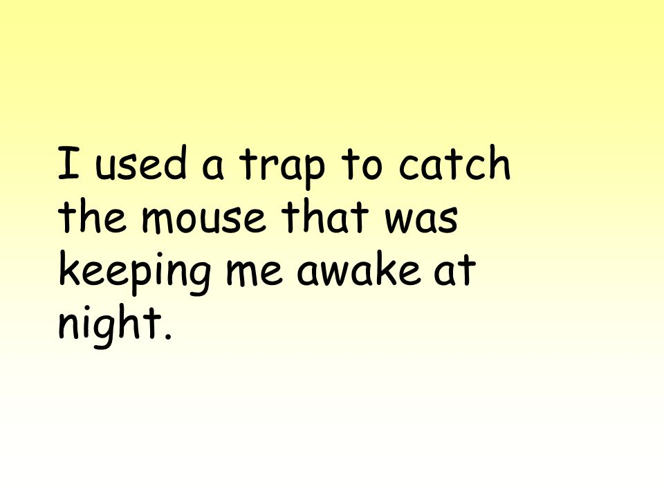 I used a trap to catch the mouse that was keeping me awake at night.