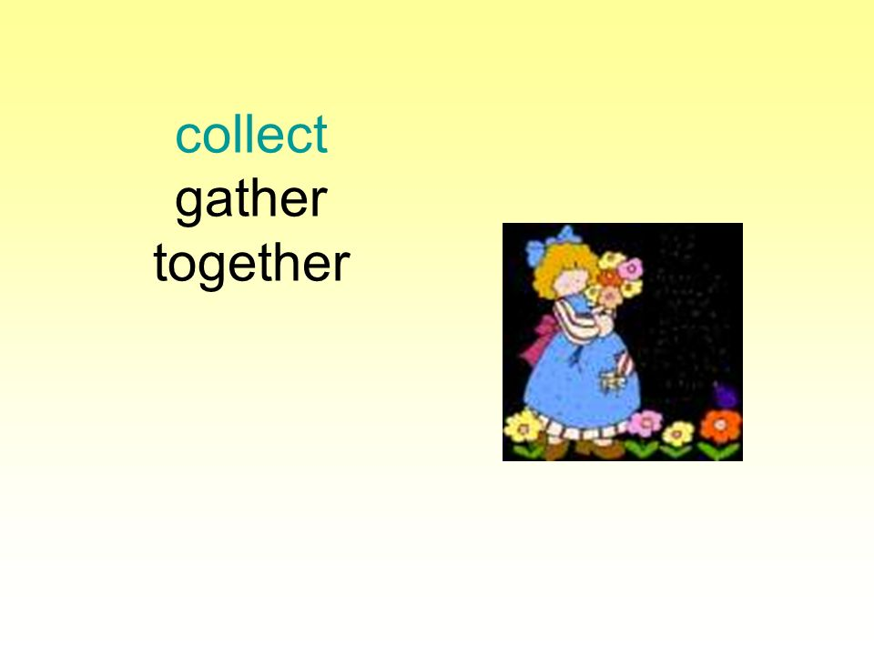 collect gather together
