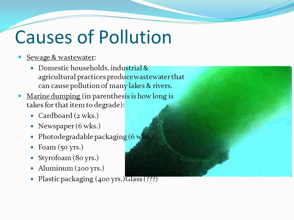 effect of domestic sewage pollution Sewage pollution 186 commercial wastes, are included in the sanitary or domestic sewage are the effects of eutrophication.