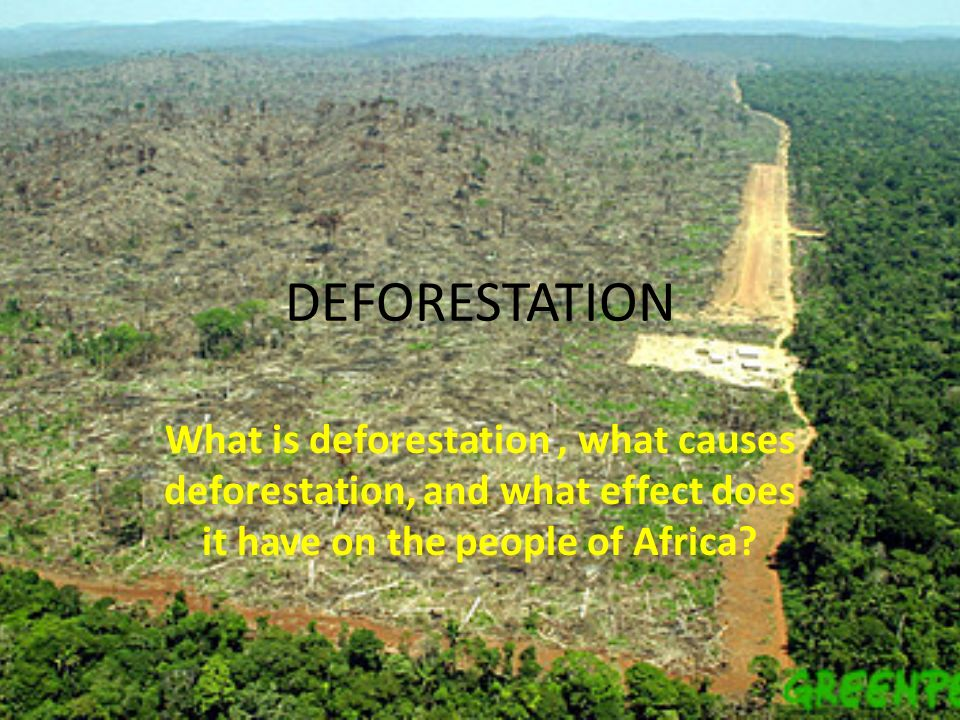 bad effects of deforestation Deforestation is when forests are converted for other purposes by cutting down the trees to clear the land for other use with 7 billion people in the planet, we.