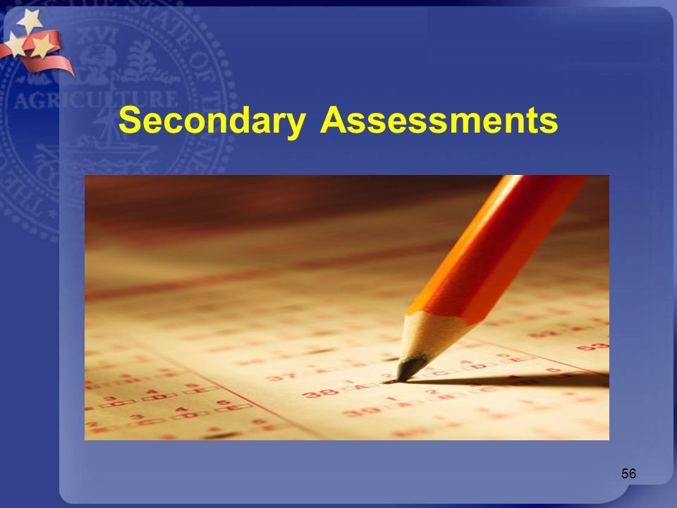 Secondary Assessments
