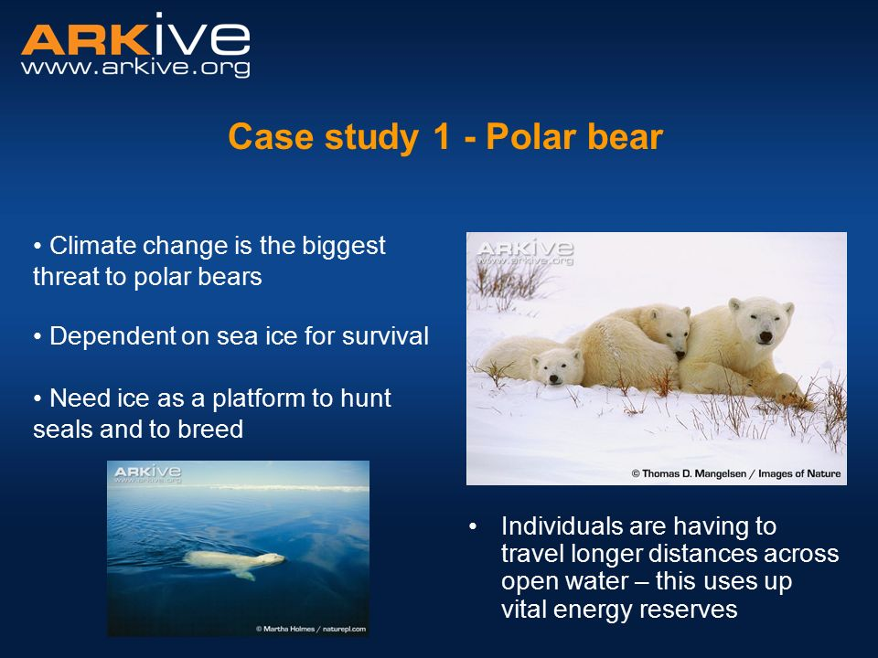 Vulnerability to climate change in the Arctic: A case ...