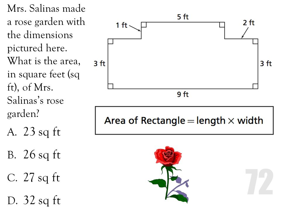 Mrs. Salinas made a rose garden with the dimensions pictured here