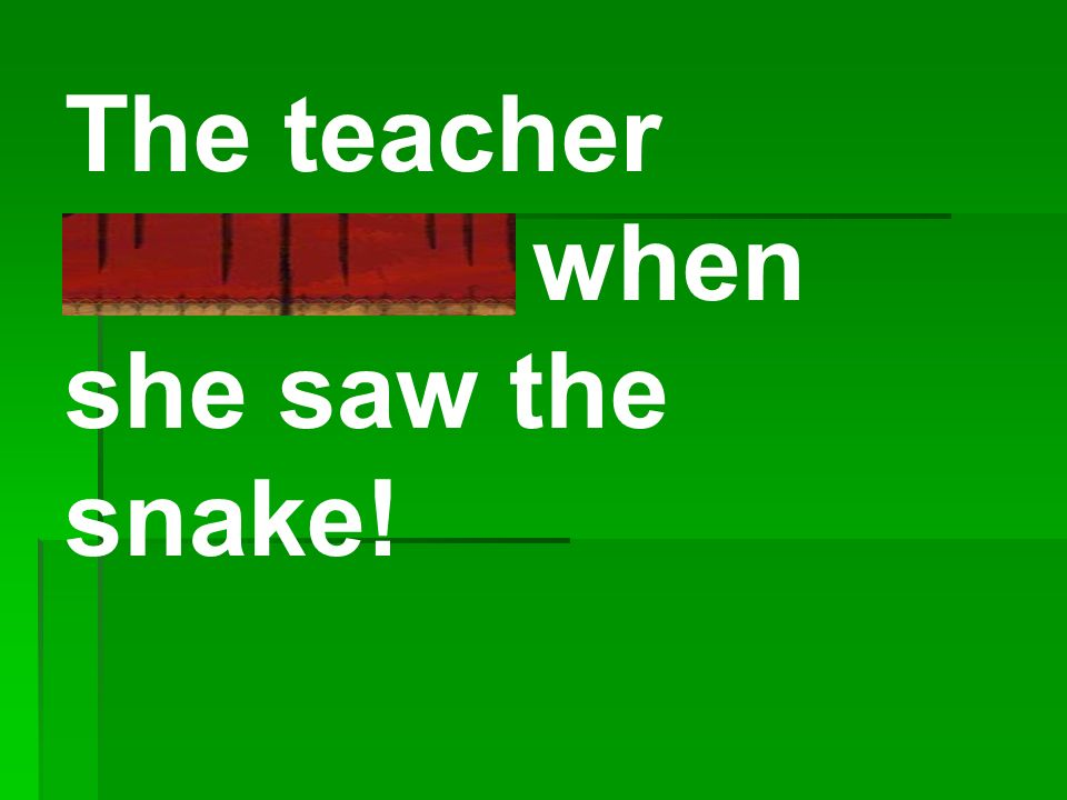 The teacher shrieked when she saw the snake!