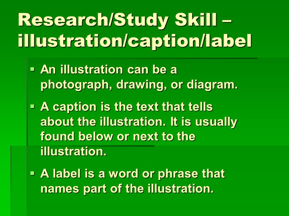 Research/Study Skill – illustration/caption/label