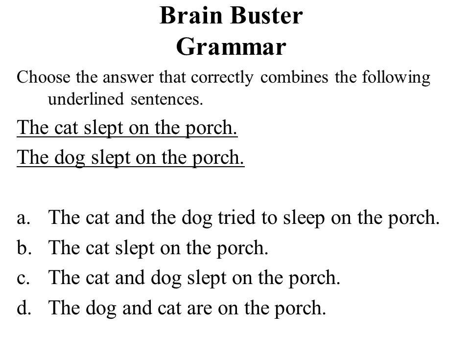 Brain Buster Grammar The cat slept on the porch.
