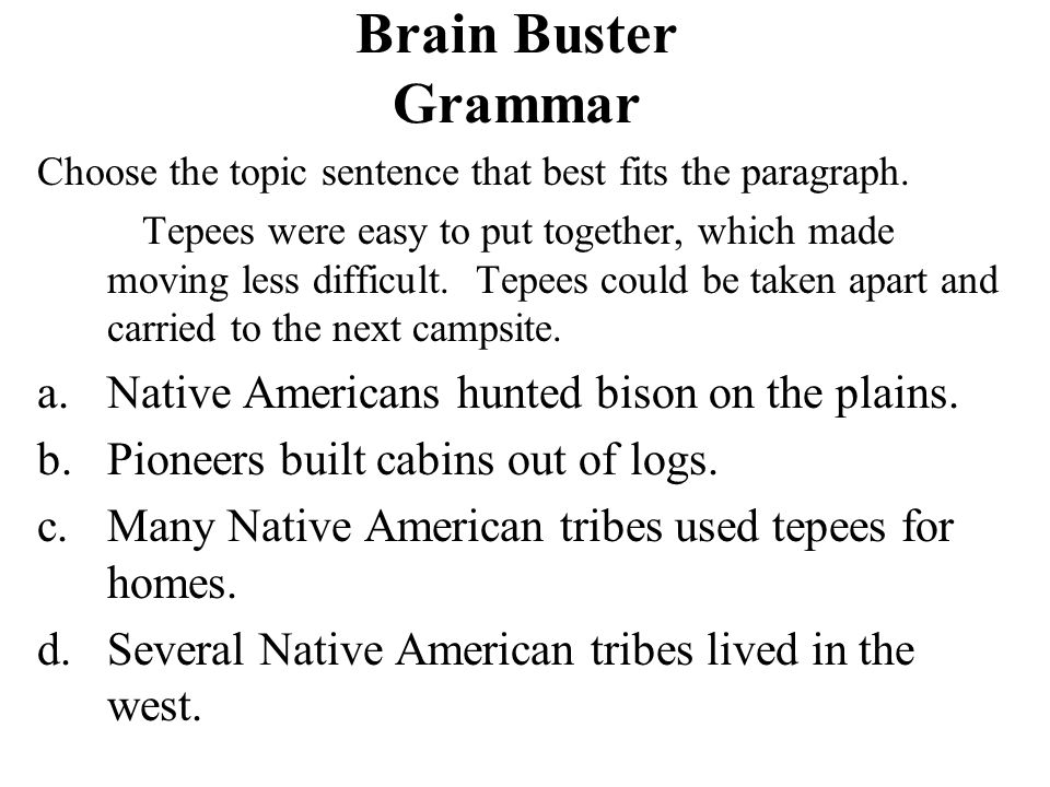 Brain Buster Grammar Native Americans hunted bison on the plains.