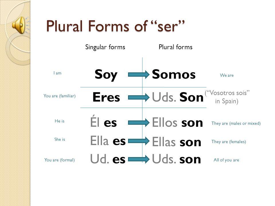Making plurals. - ppt download