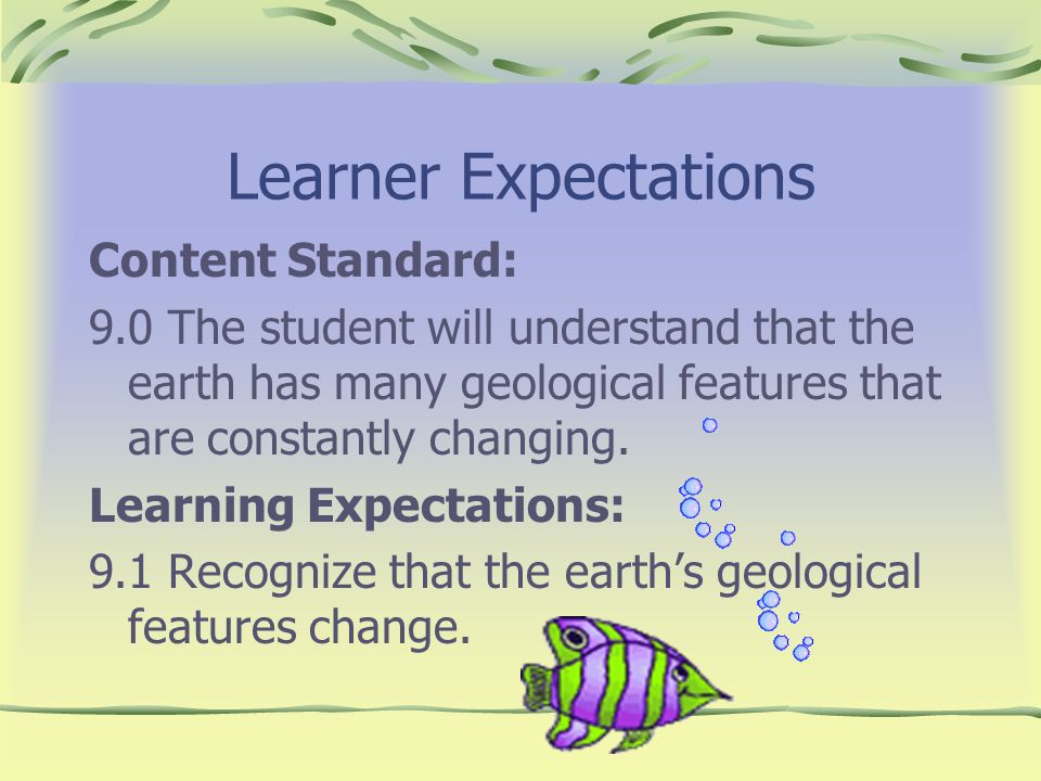 Learner Expectations Content Standard: