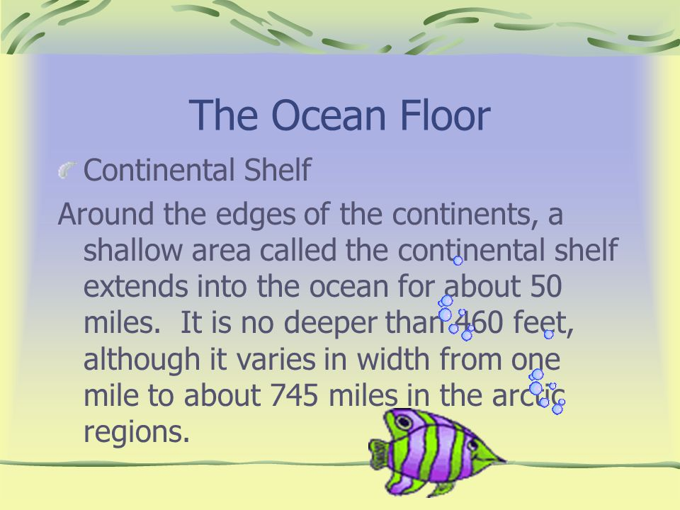 The Ocean Floor Continental Shelf