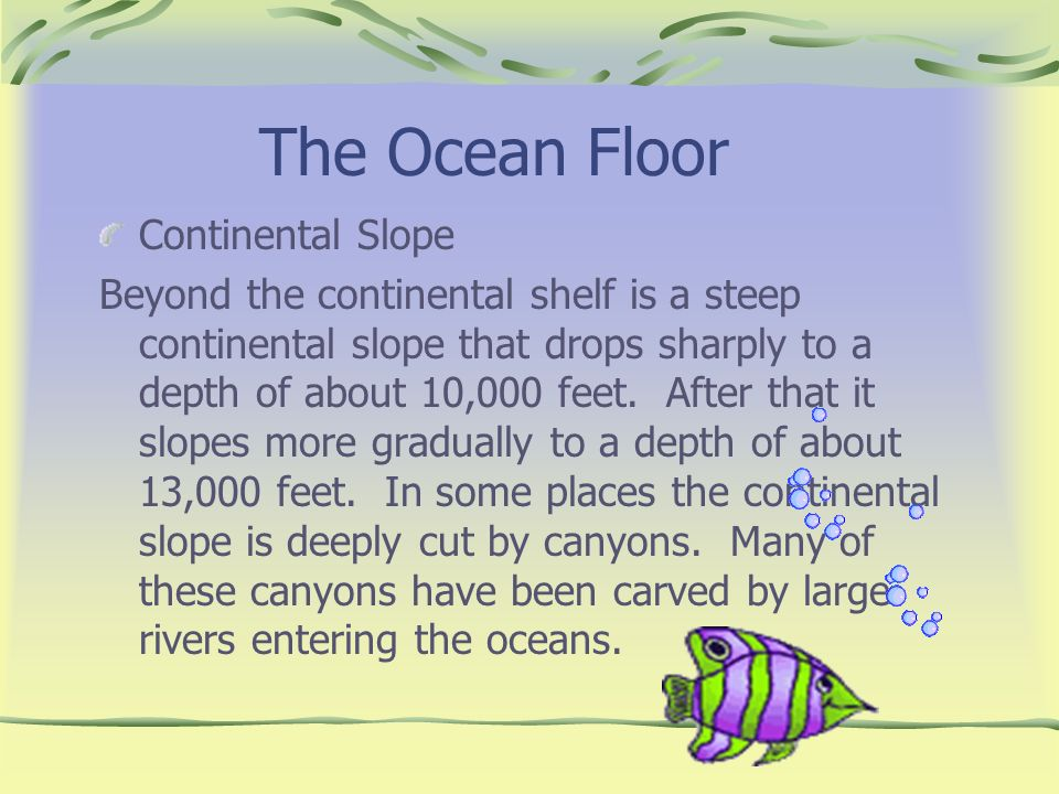 The Ocean Floor Continental Slope