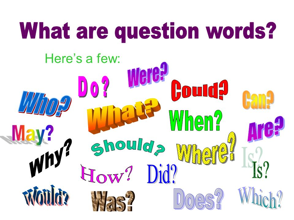 What are question words