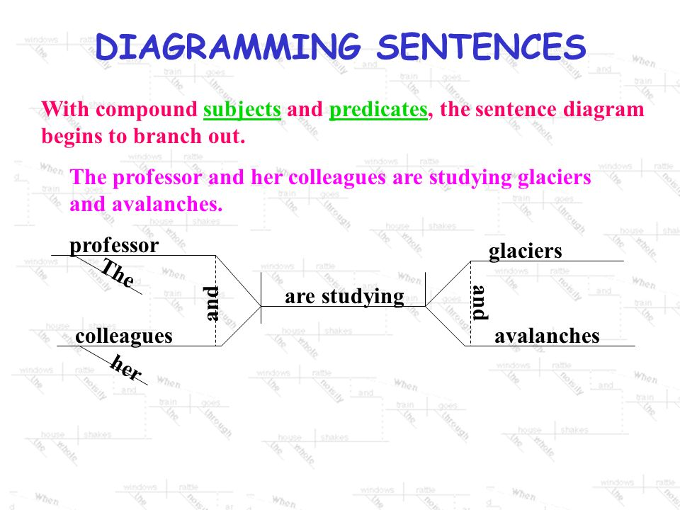 With compound subjects and predicates, the sentence diagram begins to branch out.