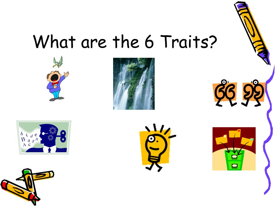 What are the 6 Traits
