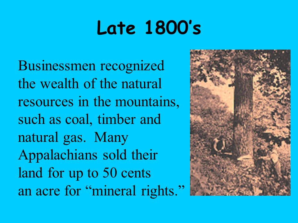 Late 1800's Businessmen recognized the wealth of the natural