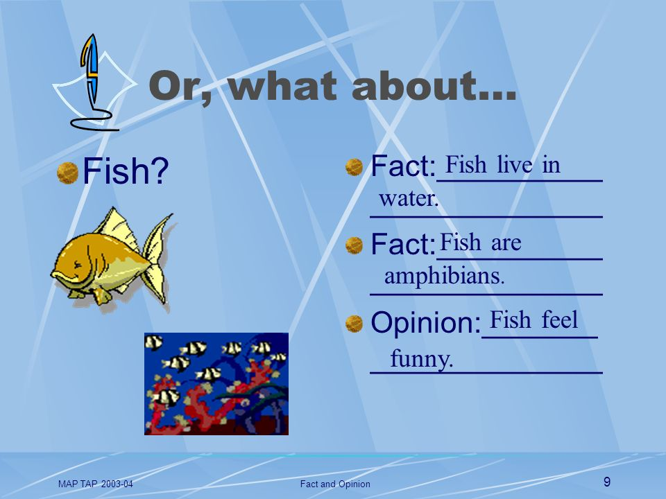 Or, what about… Fish Fact:________________________