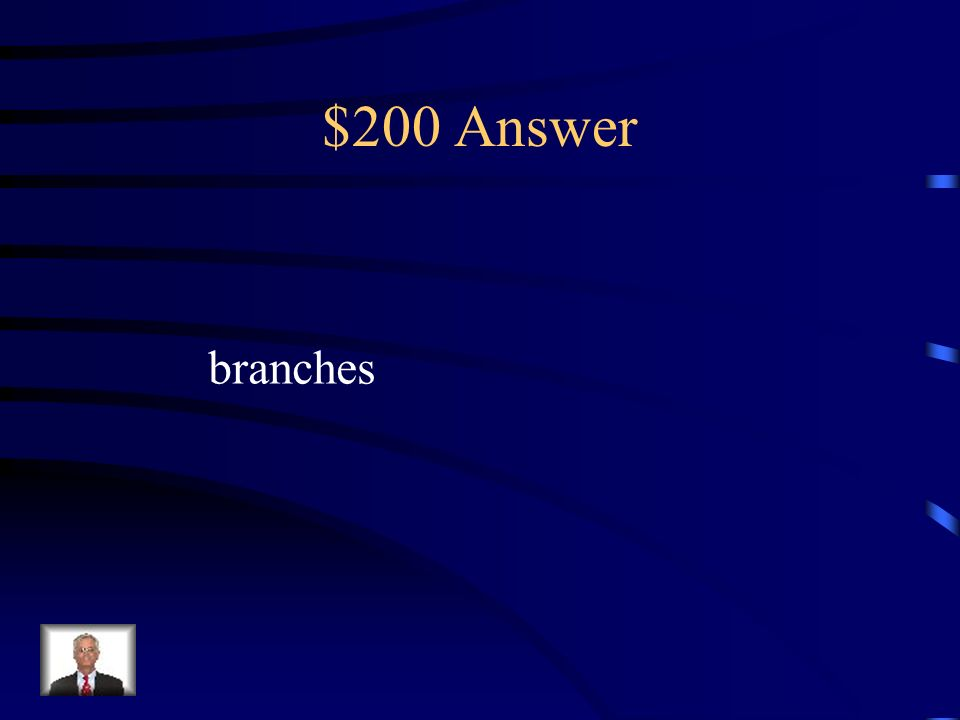 $200 Answer branches