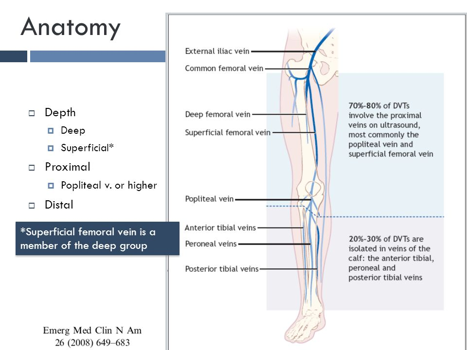 Definition of proximal in anatomy 7490860 - follow4more.info