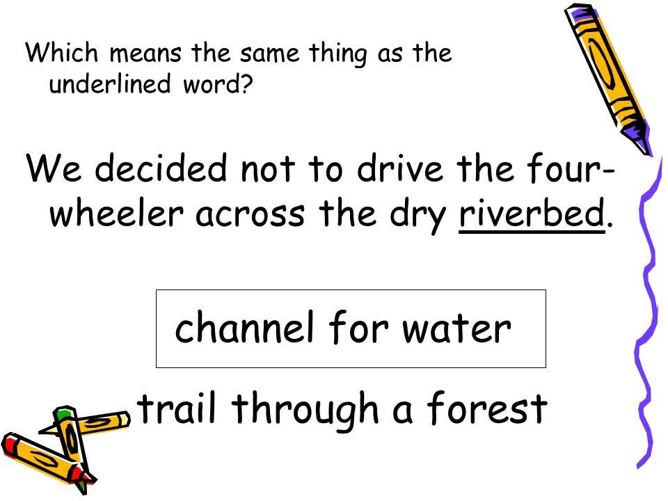 channel for water trail through a forest