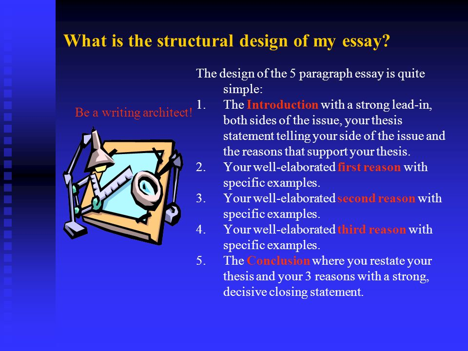 What is the structural design of my essay