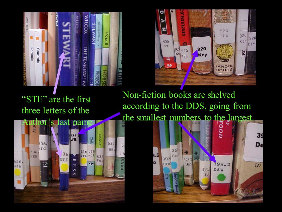 Non-fiction books are shelved according to the DDS, going from the smallest numbers to the largest.