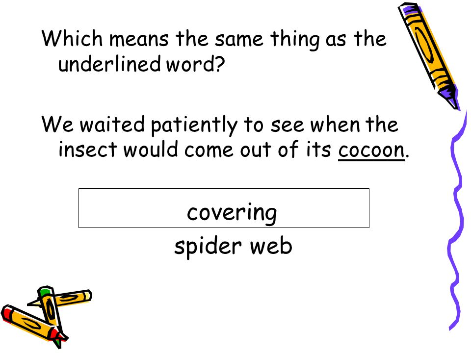covering spider web Which means the same thing as the underlined word