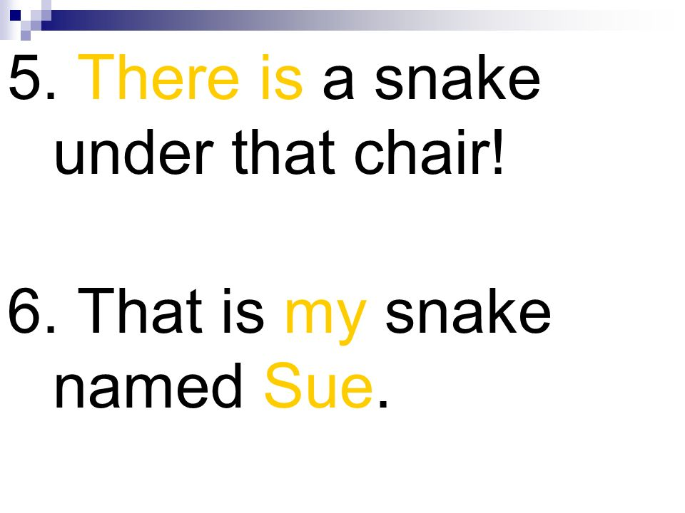 5. There is a snake under that chair!