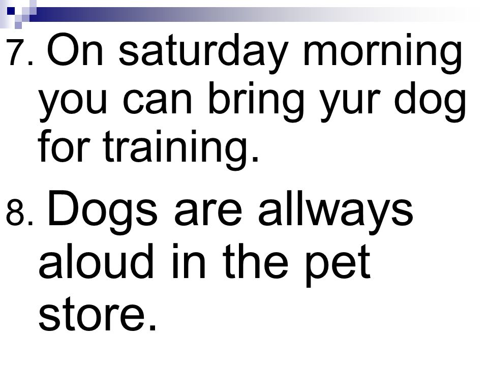7. On saturday morning you can bring yur dog for training.