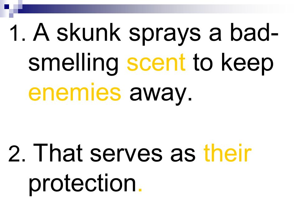 1. A skunk sprays a bad-smelling scent to keep enemies away.