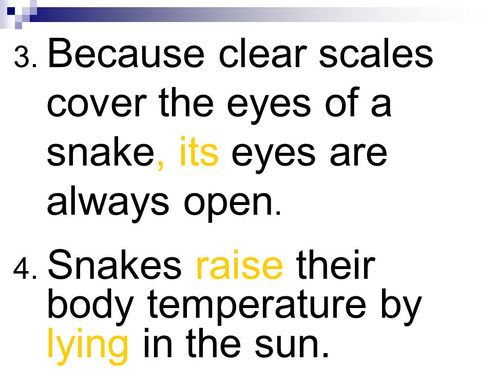 3. Because clear scales cover the eyes of a snake, its eyes are always open.