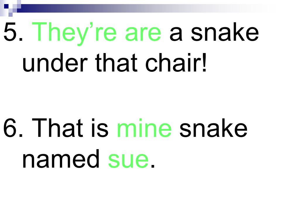 5. They're are a snake under that chair!