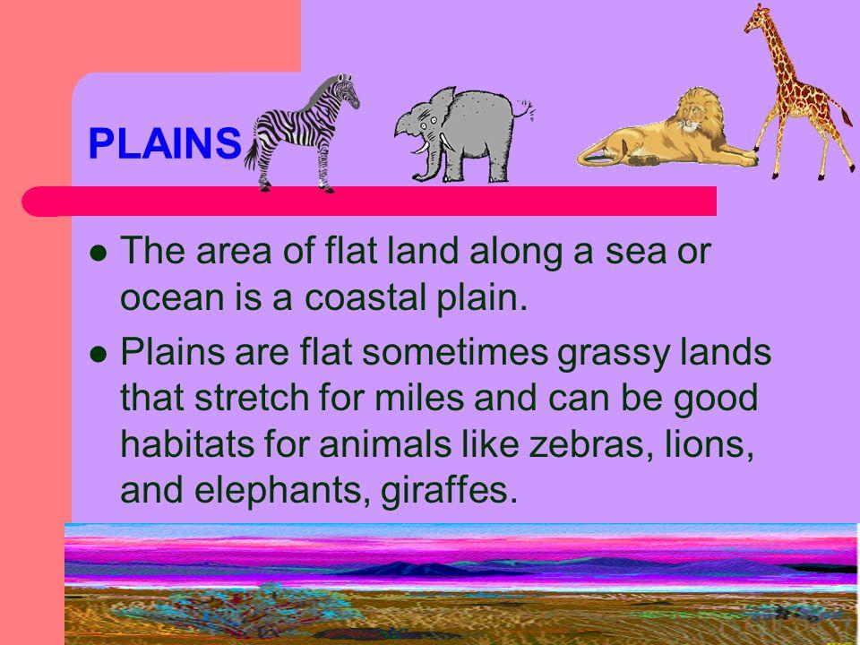 PLAINS The area of flat land along a sea or ocean is a coastal plain.