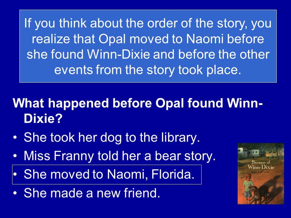 What happened before Opal found Winn-Dixie