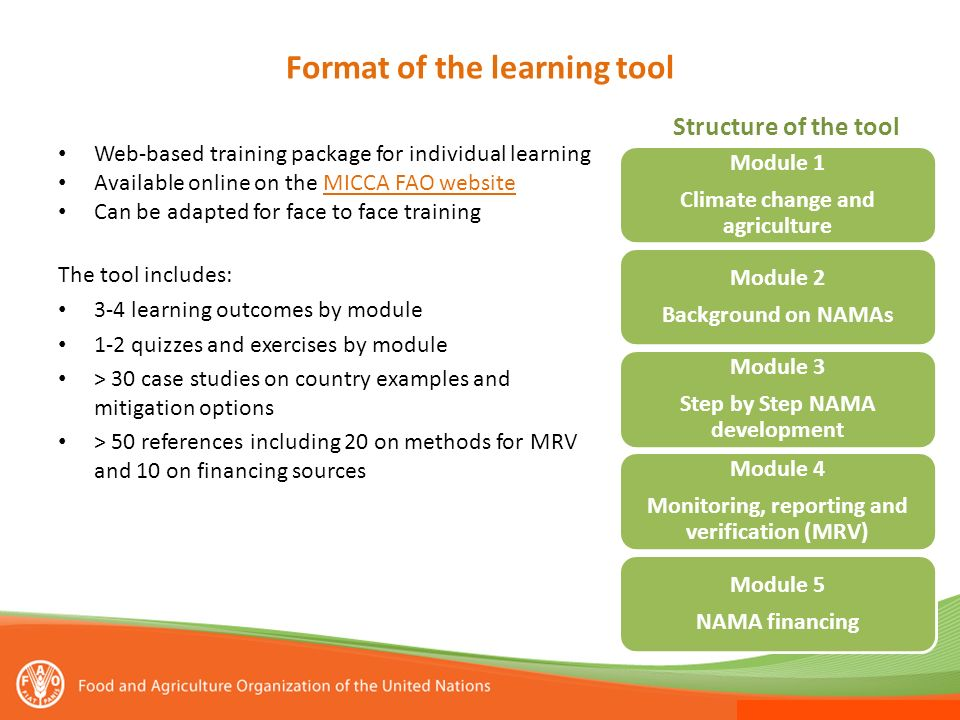 Format of the learning tool