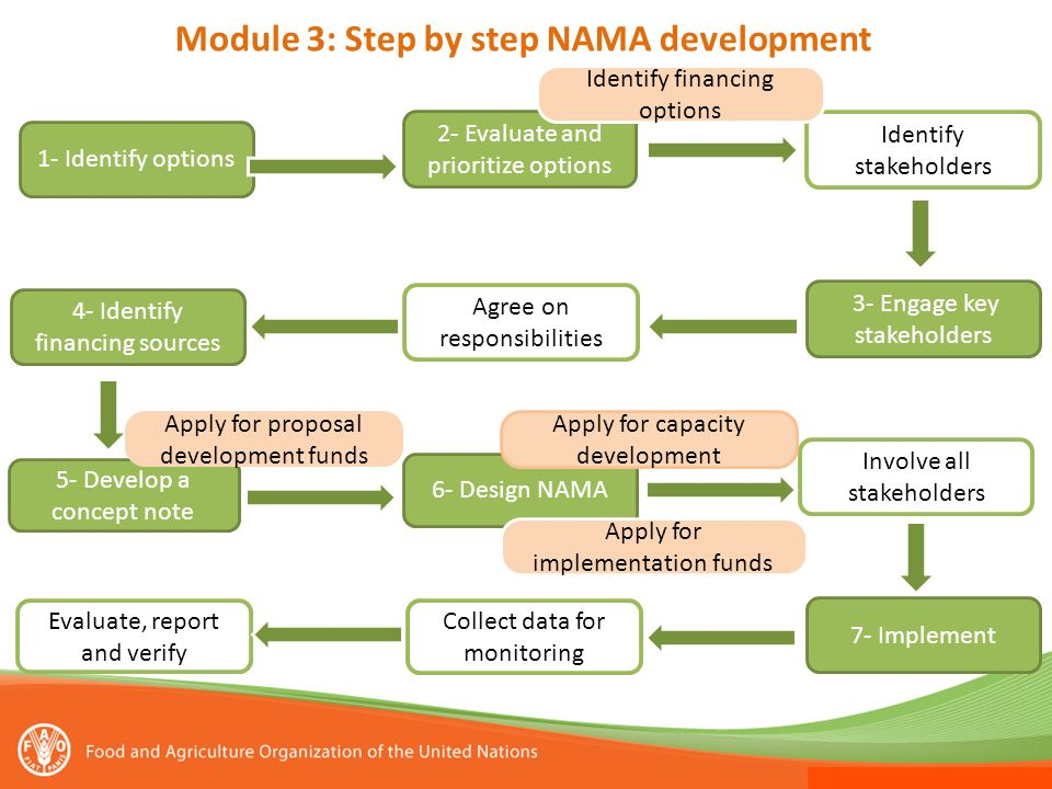 Module 3: Step by step NAMA development
