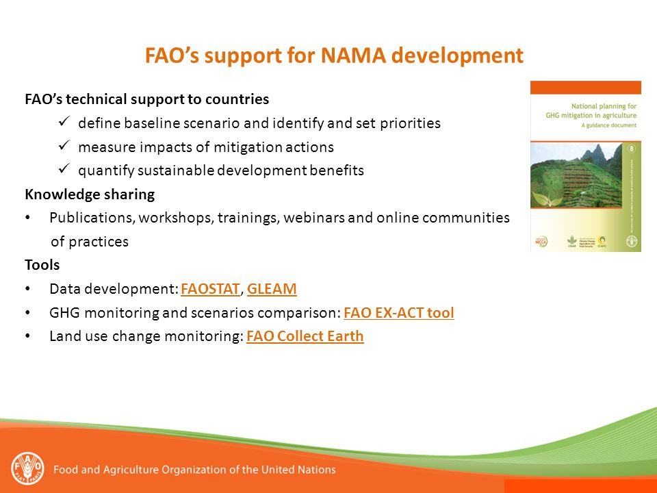 FAO's support for NAMA development