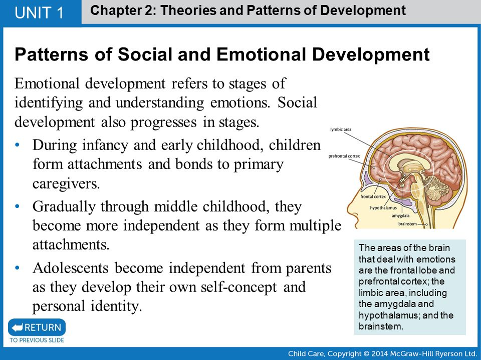 Social-Emotional Development Domain